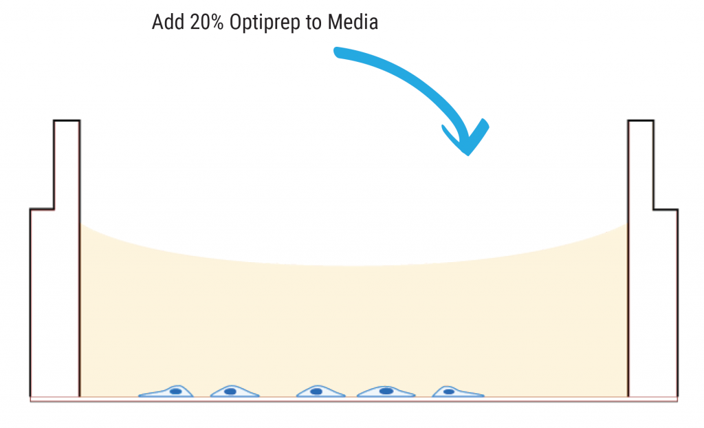 Cartoon with 20% Optiprep added