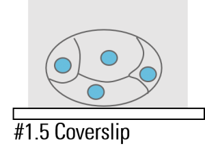 Cartoon of immobilized embryo.