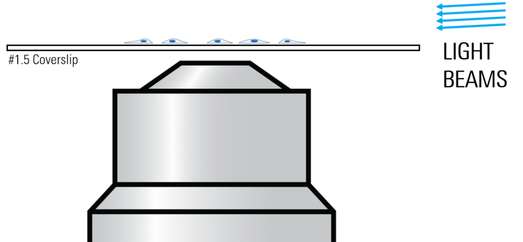 Schematic of light approaching from right