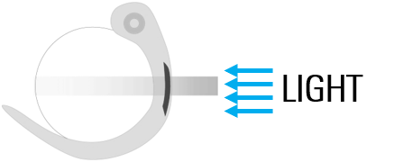 Cartoon illustrating how the structure to be imaged orientation.